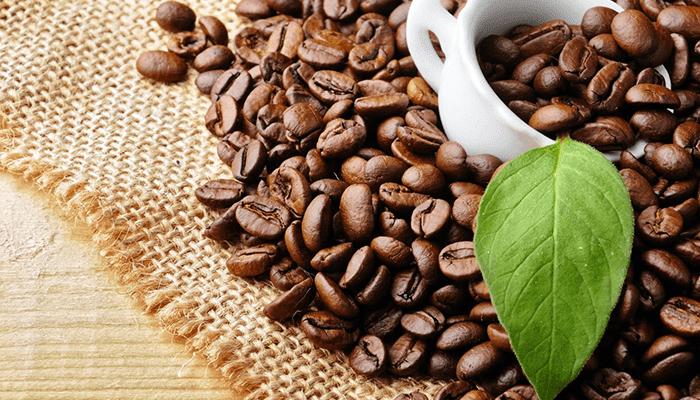Kahvenin Keşfi