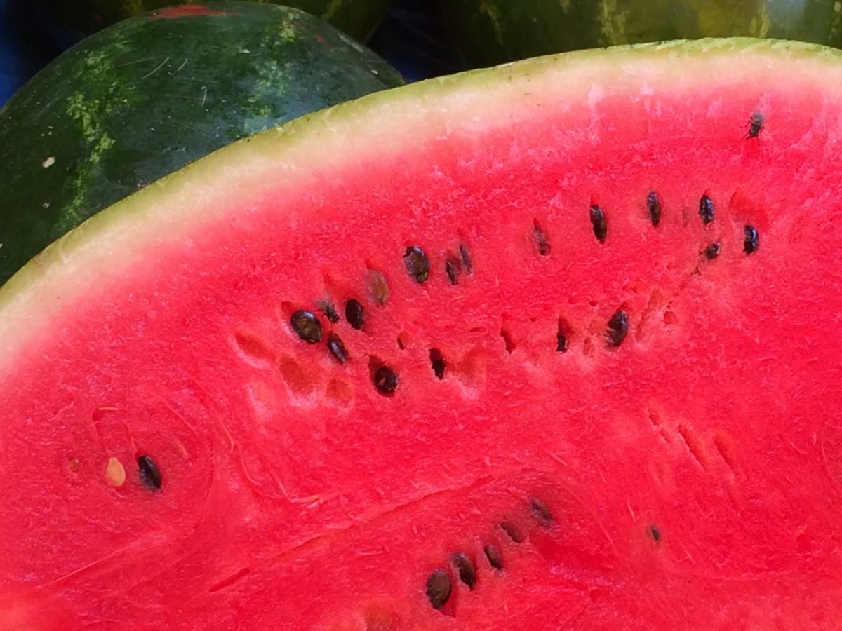 Watermelon - Foto: © Benjamin Madeira / RUL2C/Instagram