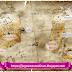 The Mana World (TMW) es un innovador MMORPG libre totalmente gratis.