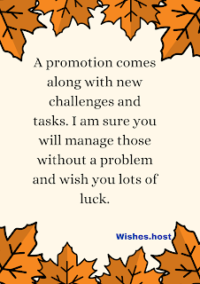 congratulations wishes for promotion