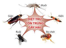 Phun muỗi tại quận Ba Đình