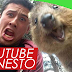 YOUTUBE HONESTO