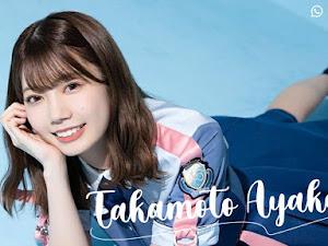 [UPDATE] WhatsApp Sticker App Takamoto Ayaka - Hinatazaka46 v1.1