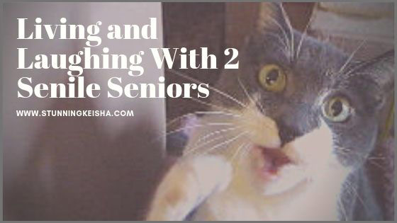 Living and Laughing With 2 Senile Seniors