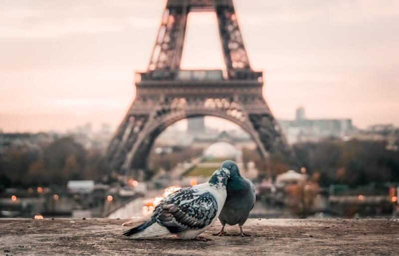 putovanja-travel-pariz-grad-ljubavi-francuska