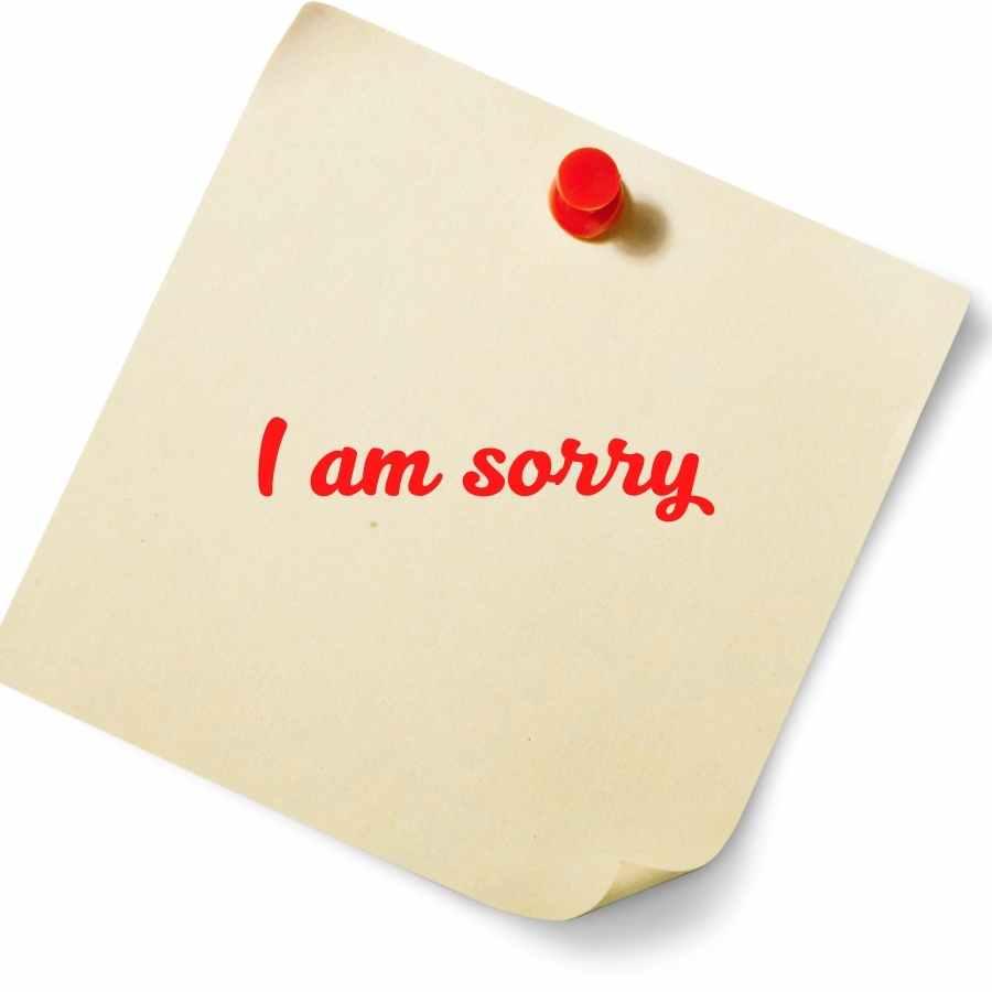 photo i am sorry