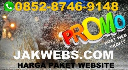 HARGA JASA PEMBUATAN WEBSITE PAPUA, HARGA JASA WEBSITE PAPUA