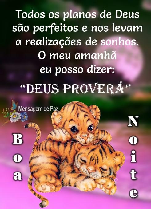 """Todos os planos de Deus   são perfeitos e nos levam   a realizações de sonhos.  O meu amanhã   eu posso dizer:  """"DEUS PROVERÁ""""  Boa Noite!"""