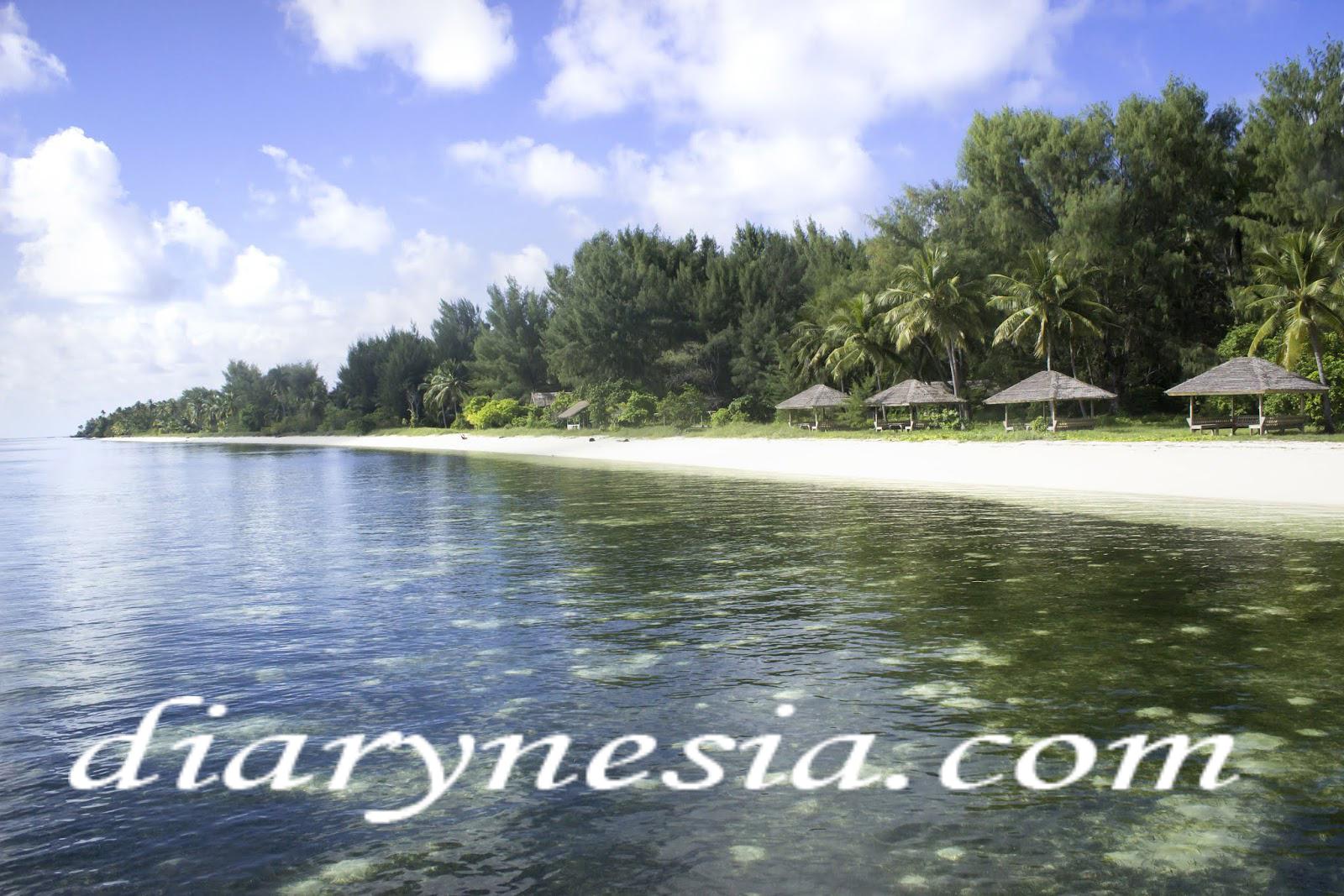 wakatobi tourism, South East Sulawesi, Wakatobi tourist attraction, diarynesia