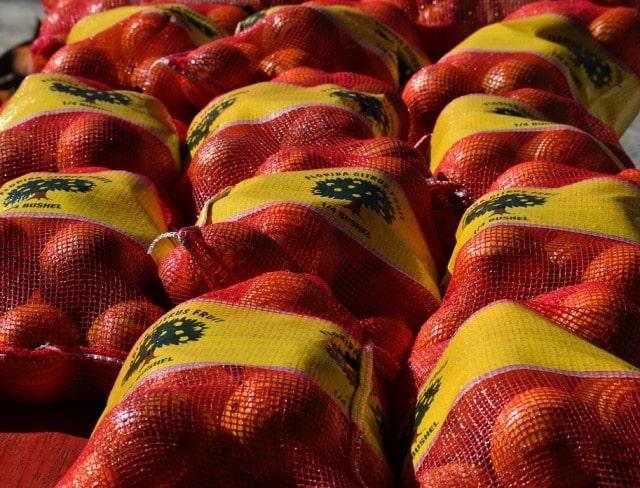healthy oranges workout lifting bag of orange fruits frugal workout