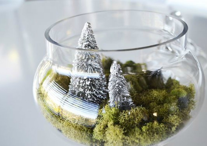 https://laurenconrad.com/blog/2015/12/deck-the-halls-diy-winter-terrariums/