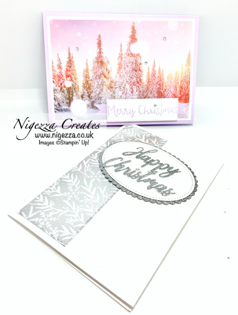 Nigezza Creates with Stampin' Up! Feels Like Frost