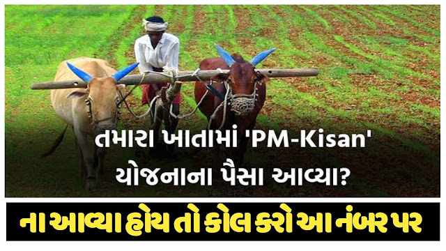 If You Have Not Received The Money Of Pm Kisan Yojana, Then Call This Number