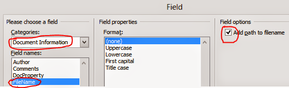 Insert File Path in Office 2010 from Field