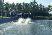 Komisi II DPRD Sumenep Sidak Tambak Udang di Dua Lokasi