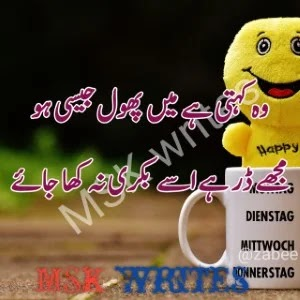Funny Poetry Urdu