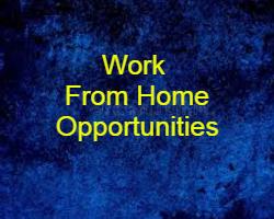 Work From Home Opportunity | अपने घर मे रहकर कैसे काम करे ?