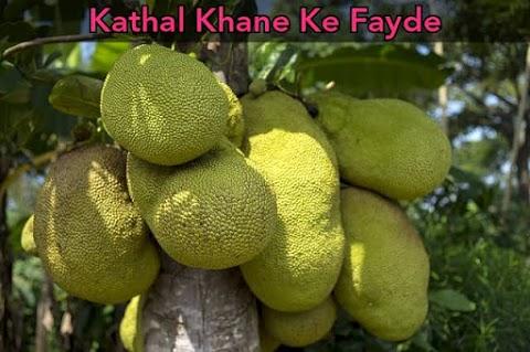 Kathal Khane Ke Fayde in Hindi | Jackfruit Benefits in Hindi