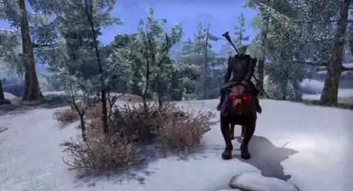 Elder Scrolls Online update 2.19