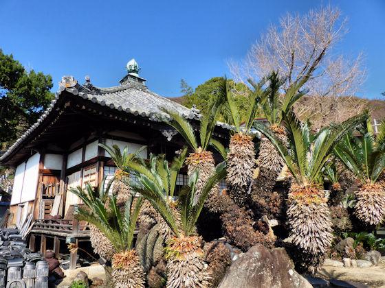 Shodoshima Pilgrimage Temple 3 Kannonji