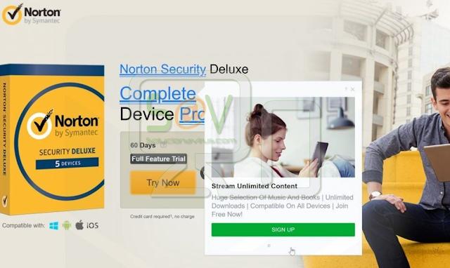 Net Proxy Auto Service (Adware)