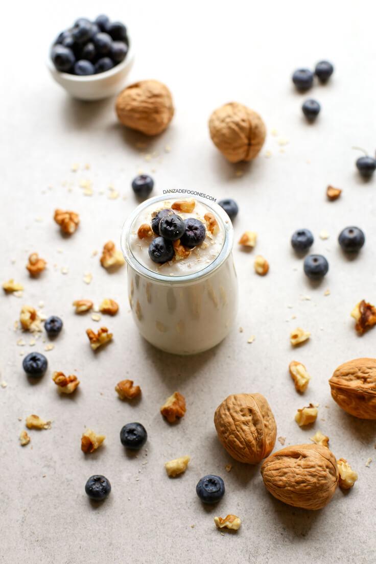 Vegan Coconut Yoghurt Recipe Without Milk | danceofstoves.com #vegan