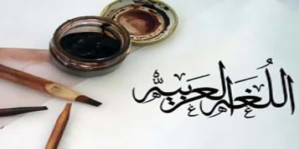 قصيدة عن اللغة العربية