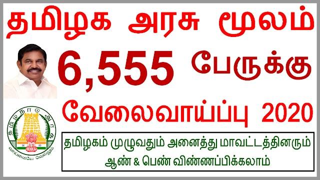 தமிழக அரசு மூலம் 6,555  பேருக்கு வேலைவாய்ப்பு 2020