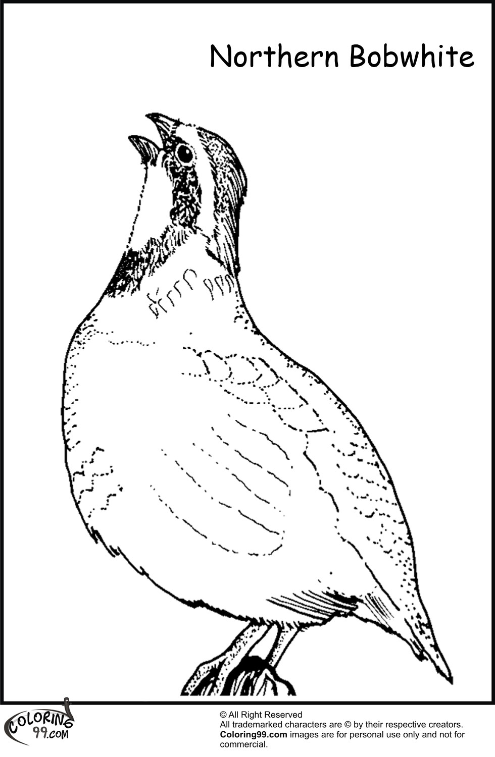 Quail coloring pages minister