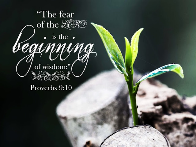The fear of the LORD is the beginning of wisdom, and knowledge of the Holy One is understanding.