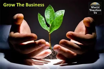 How does salesmanship increase a business Grow organically?