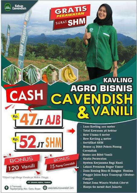 Bukit villa cavendish kavling produktif  buah pisang dan Vanili