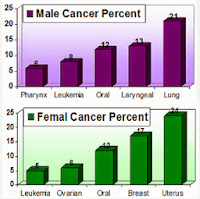 Various Types of Cancer's Affecting Percentage