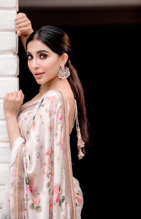 Parvati Nair hot in saree photos