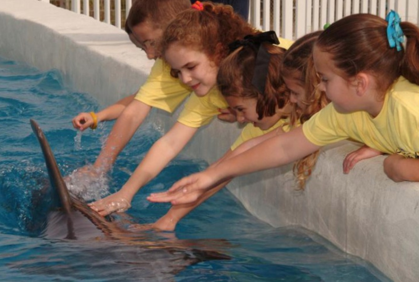 Panama City Beach Attractions For Kids