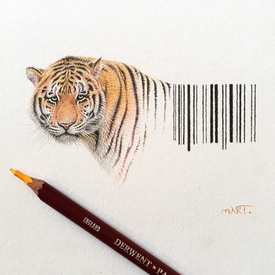 13-Tiger-Stripes-Martin-Aveling-Animal-Portraits-www-designstack-co