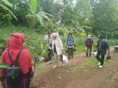 Jaga Hutan Tetap Lestari, COBRA Lampung Tanam Pohon di Tahura Wan Abdul Rachman