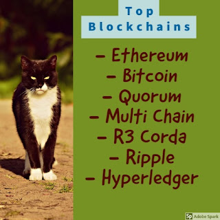 top blockchains