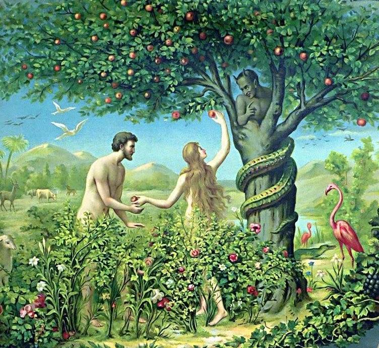 Garden Of Eden Story In Quran   Fasci Garden