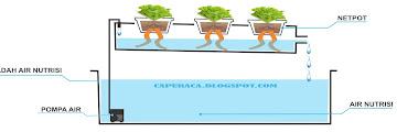 Macam-macam Sistem Tanam Hidroponik