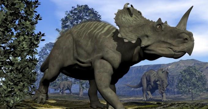 Ερευνητές: Και οι δεινόσαυροι είχαν καρκίνο