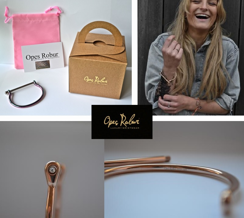 Opes Robur blog competition