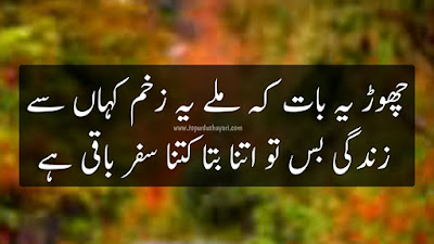 Two Line Sad Shayari in Urdu