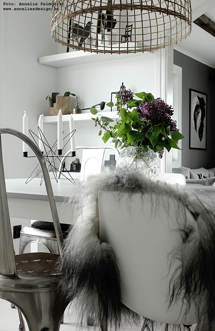 fårskinn, skinn, fäll, fårfäll, stol, stolar, webbutik, webbutiker, webshop, inredning, annelies design, nettbutikk, nettbutikker, ljusstake, ljusstakar, madam stoltz, matsal, kök, kitchen, köket, köks, vitt, vit, vita, grått, grå, svart och vitt, svartvit, svartvita, syrén, syréner, blommor, lila,