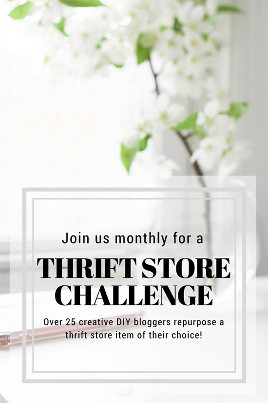 Thrift Store Challenge with bloggers