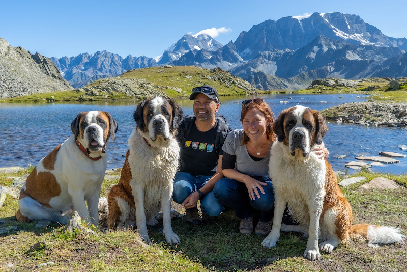 St. Bernard Pass Hike Things to Do Martigny Switzerland