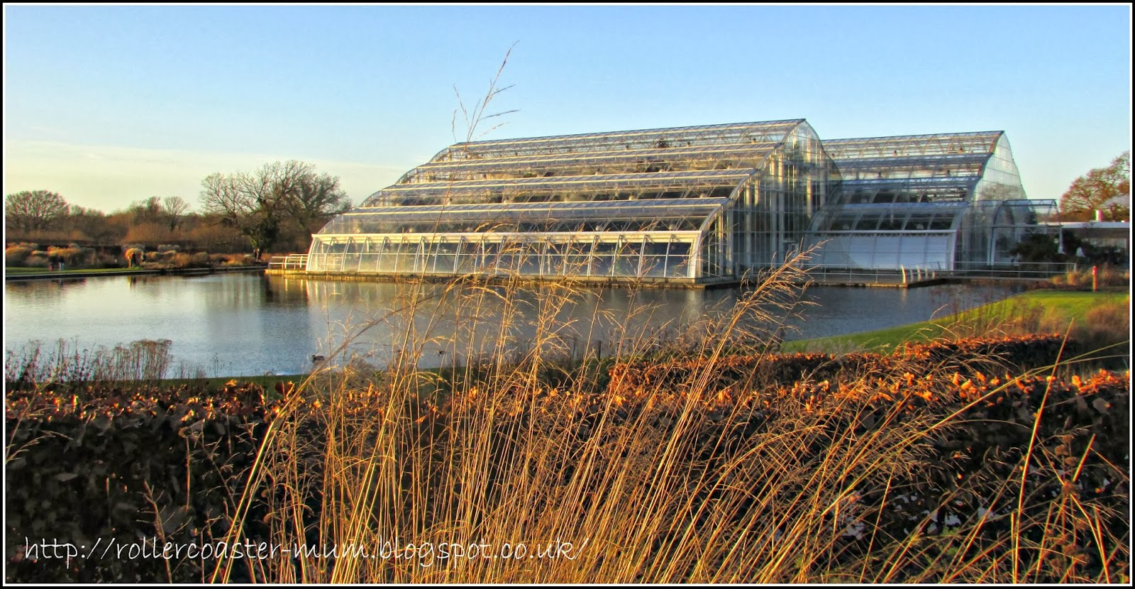 view of the Glasshouse in winter, RHS Wisley