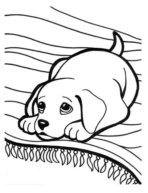 Hình tô màu con chó Puppy