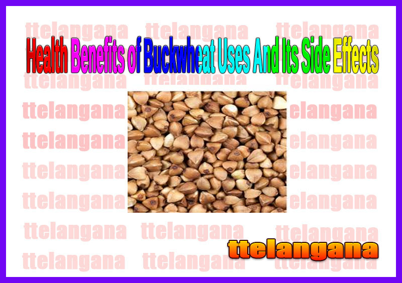 Health Benefits of Buckwheat Uses And Its Side Effects