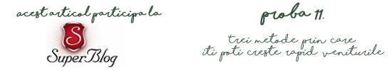 https://blog.super-blog.eu/proba-11-trei-metode-prin-care-iti-poti-creste-rapid-veniturile/